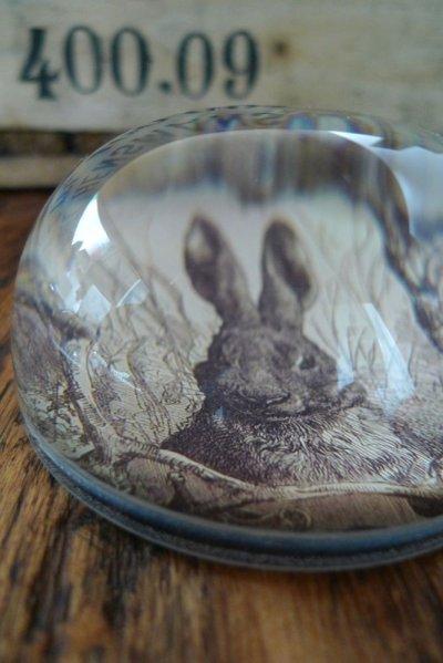 画像1: ペーパーウェイト GLASS DOME/SEPIA RABBIT