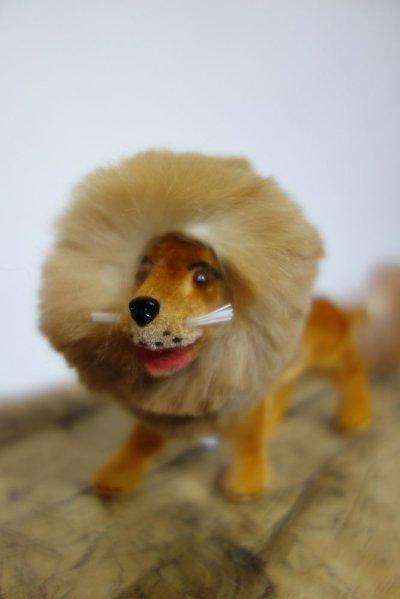画像1: ライオン フロッキーアニマル/SMALL